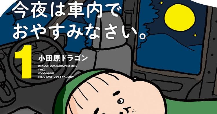 今夜は車内でおやすみなさい。